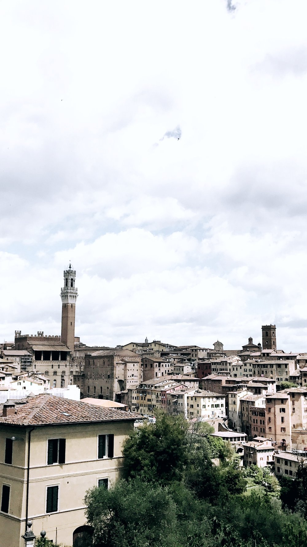 Panoramic views of Siena, Italy