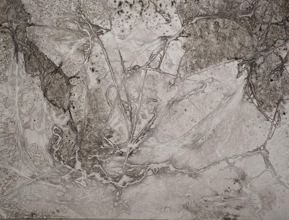 frame-ink1 1.jpg