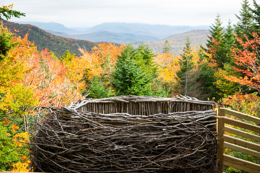 Birds Nest - The final leg of our adventure brought us to an unusual birds nest. The nest had quite the view! We stopped and enjoyed the oddity and the view.
