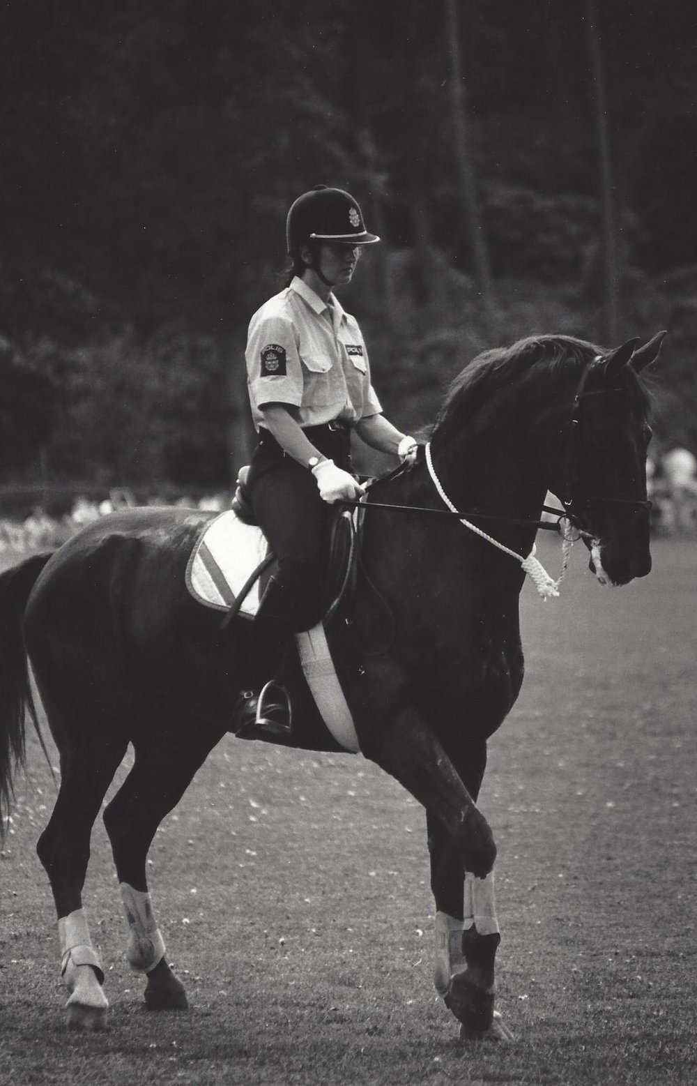 Barbro on her police horse Alert 1985.jpg