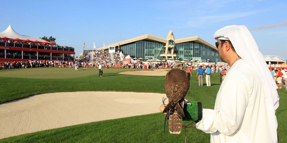 Abu_Dhabi_Golf_Falcon.jpg