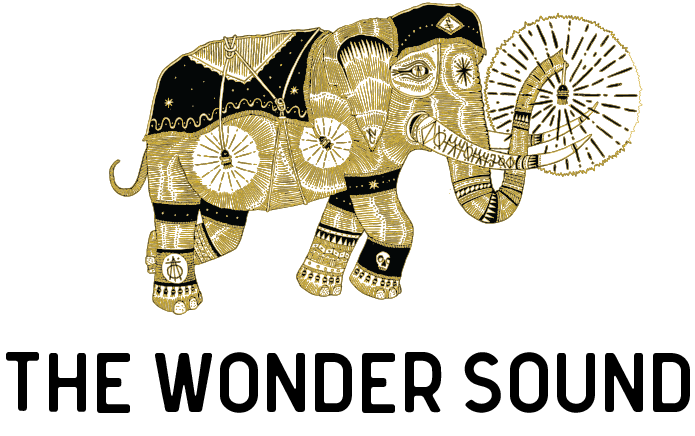THE WONDER SOUND