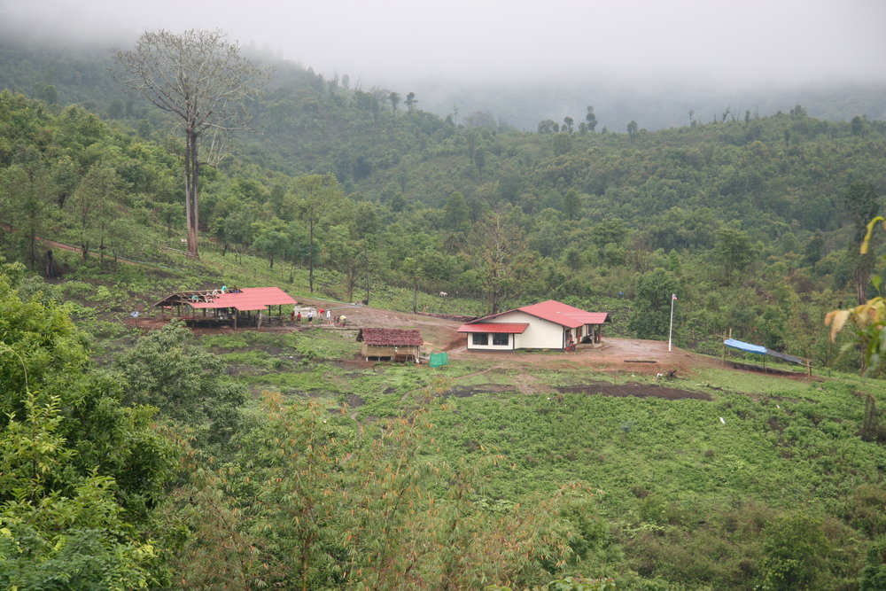2008 Village 05.JPG