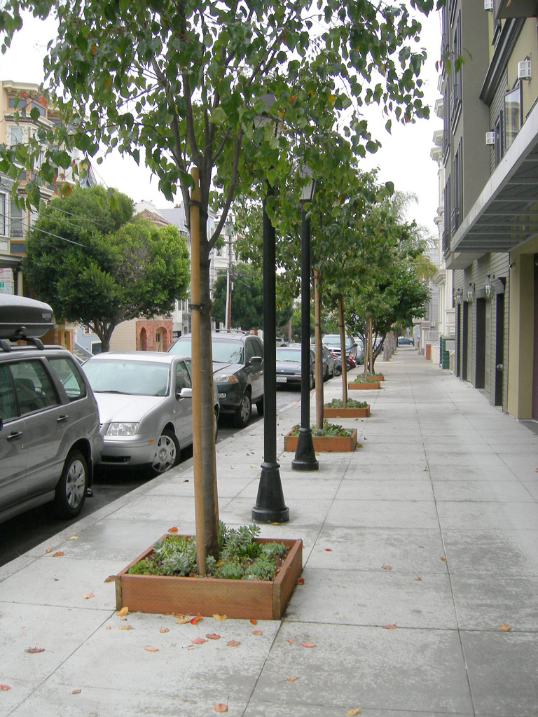 Sidewalk Greening Trees, planters, parklets and gardens along sidewalks would add aesthetic and ecological value to public spaces
