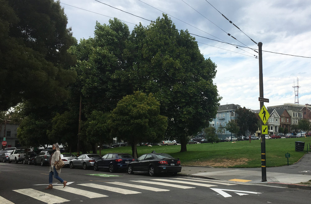Kezar Intersection Safety Upgrades
