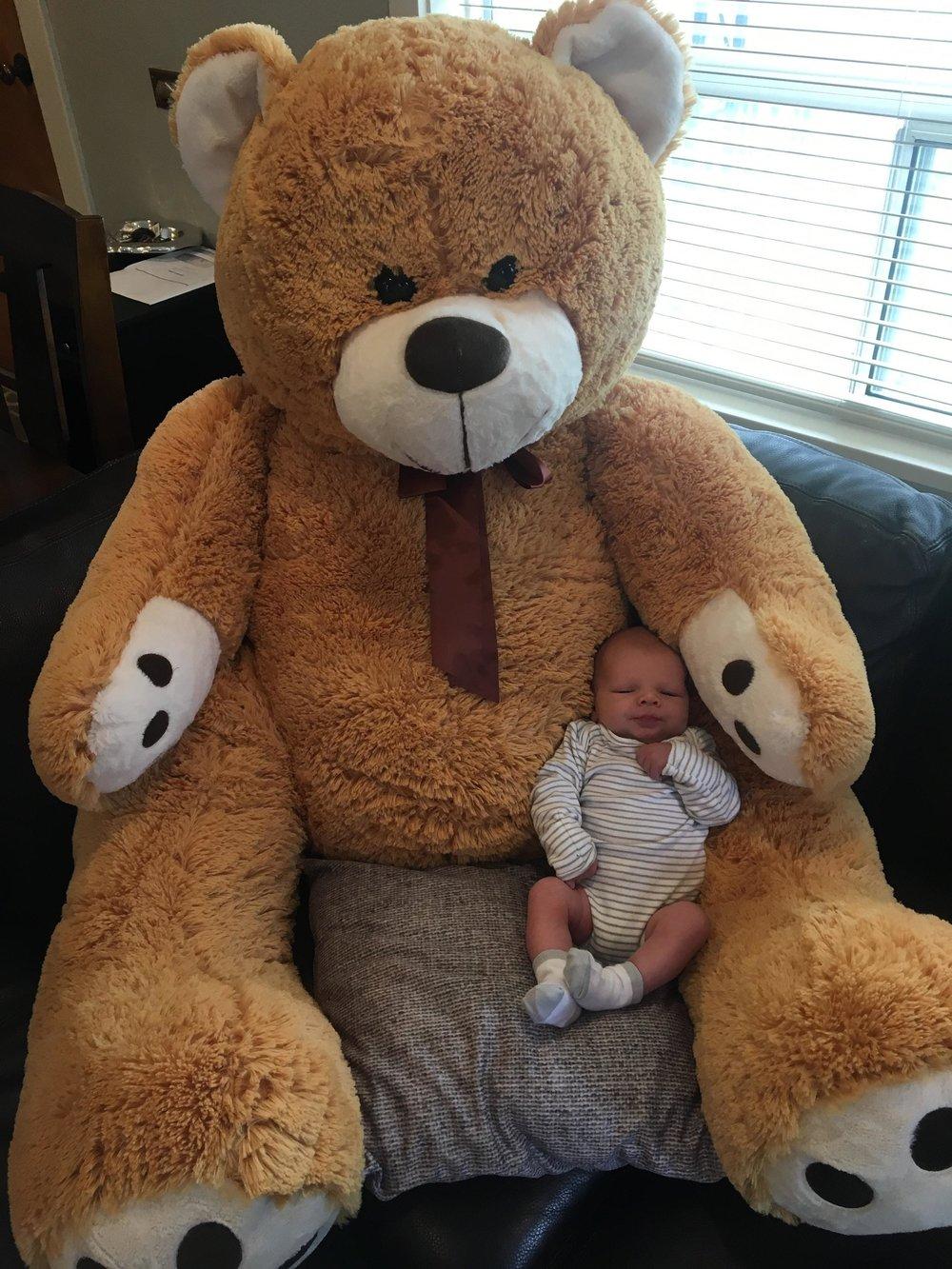 baby Haaken Harcourt Gardiner with giant teddy bear