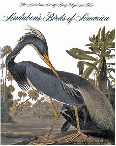 audobon's birds of america book
