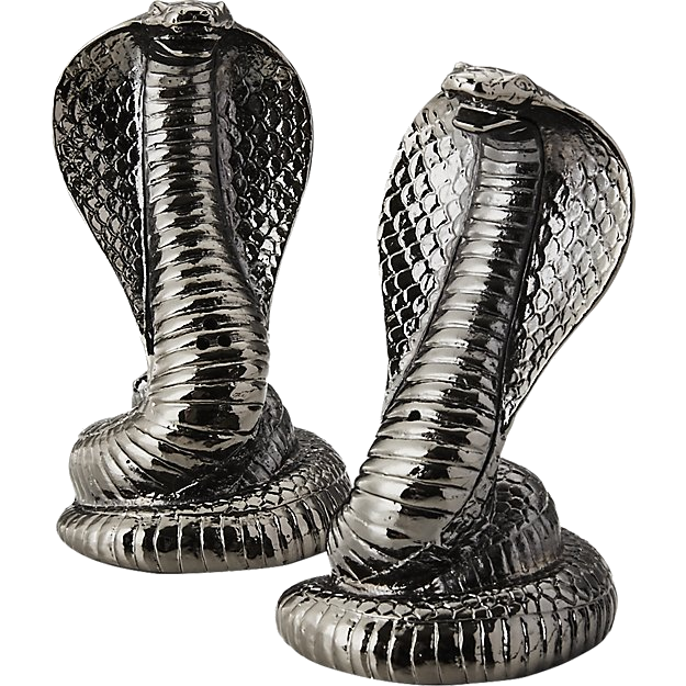 cobra salt + pepper shakers