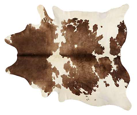 room & board cowhide rug