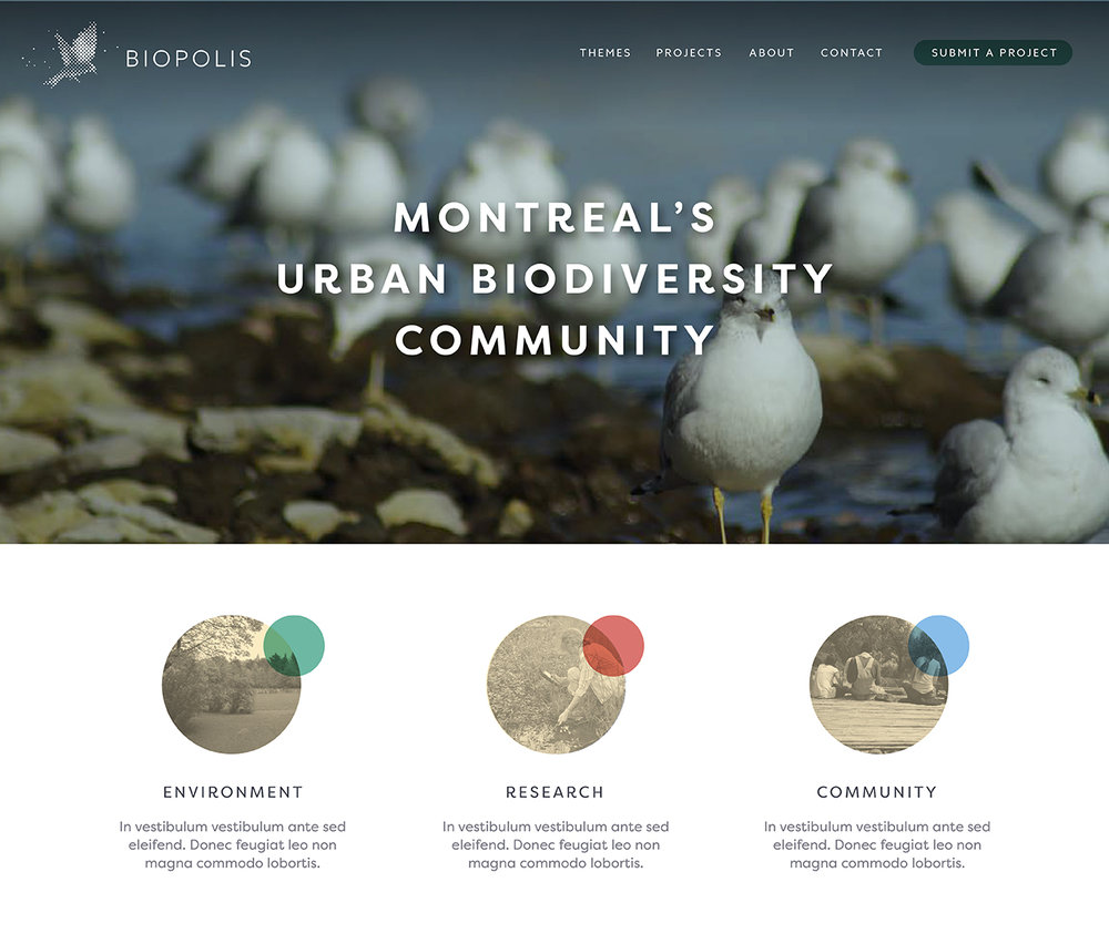 World Wildlife Fund, Biopolis - Brand identity and website for a successful pilot project that has since been replicated in other Canadian cities.