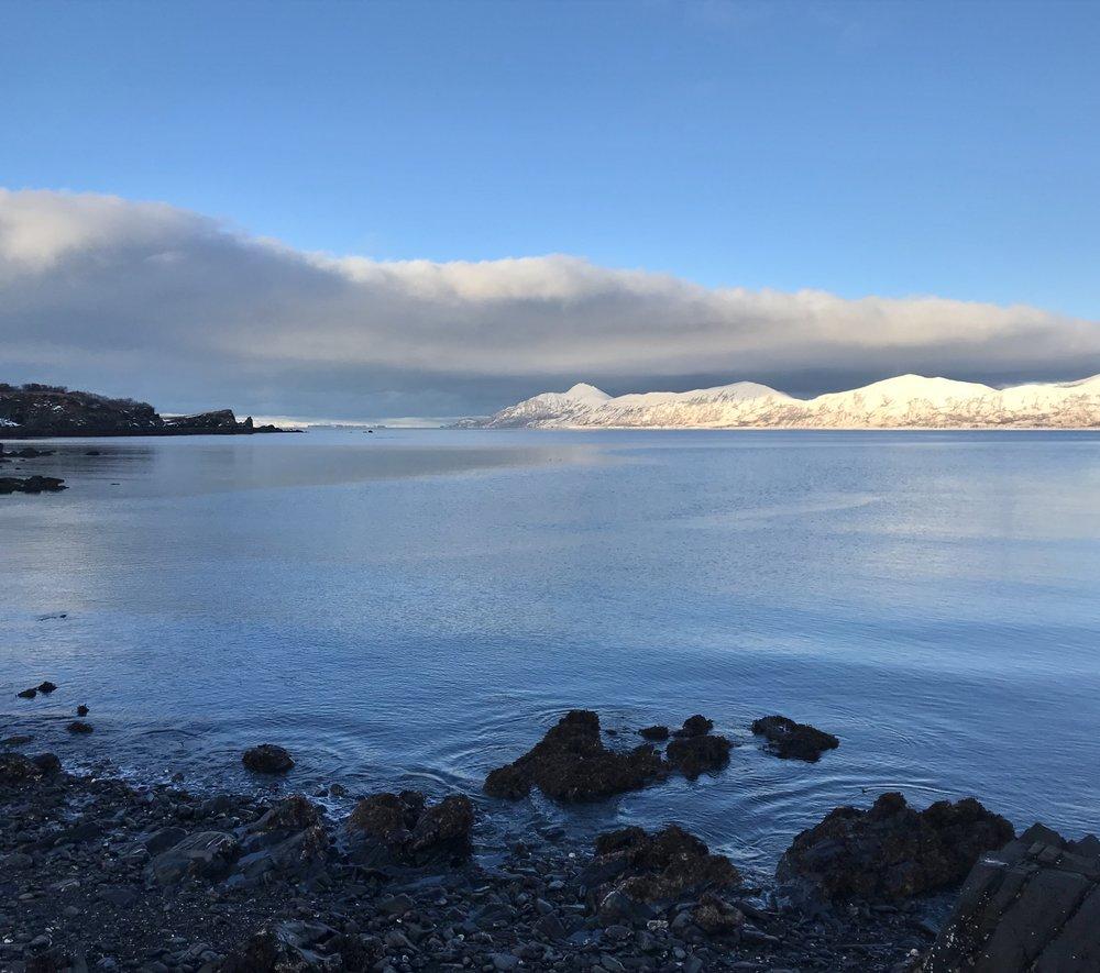Uganik Island in winter