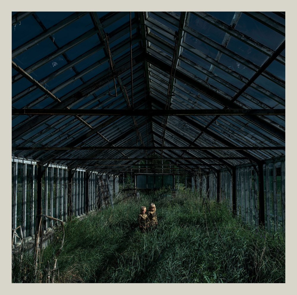 Dealer by Foxing