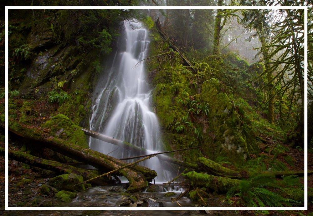 Remote Trails Vancouver Island