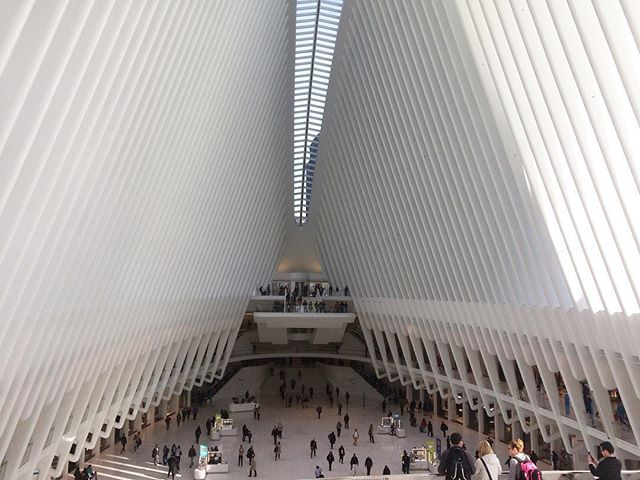 the spine of this structure floods the station with light // Santiago Calatrava's signature reinforced concrete anchors the structure while evoking an ethereal sensation for users