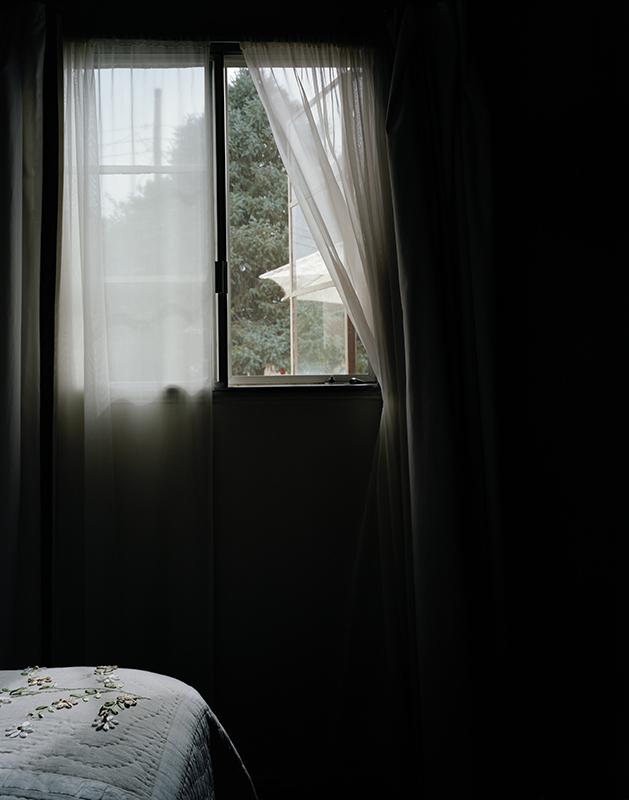 Lifted veil, 2011