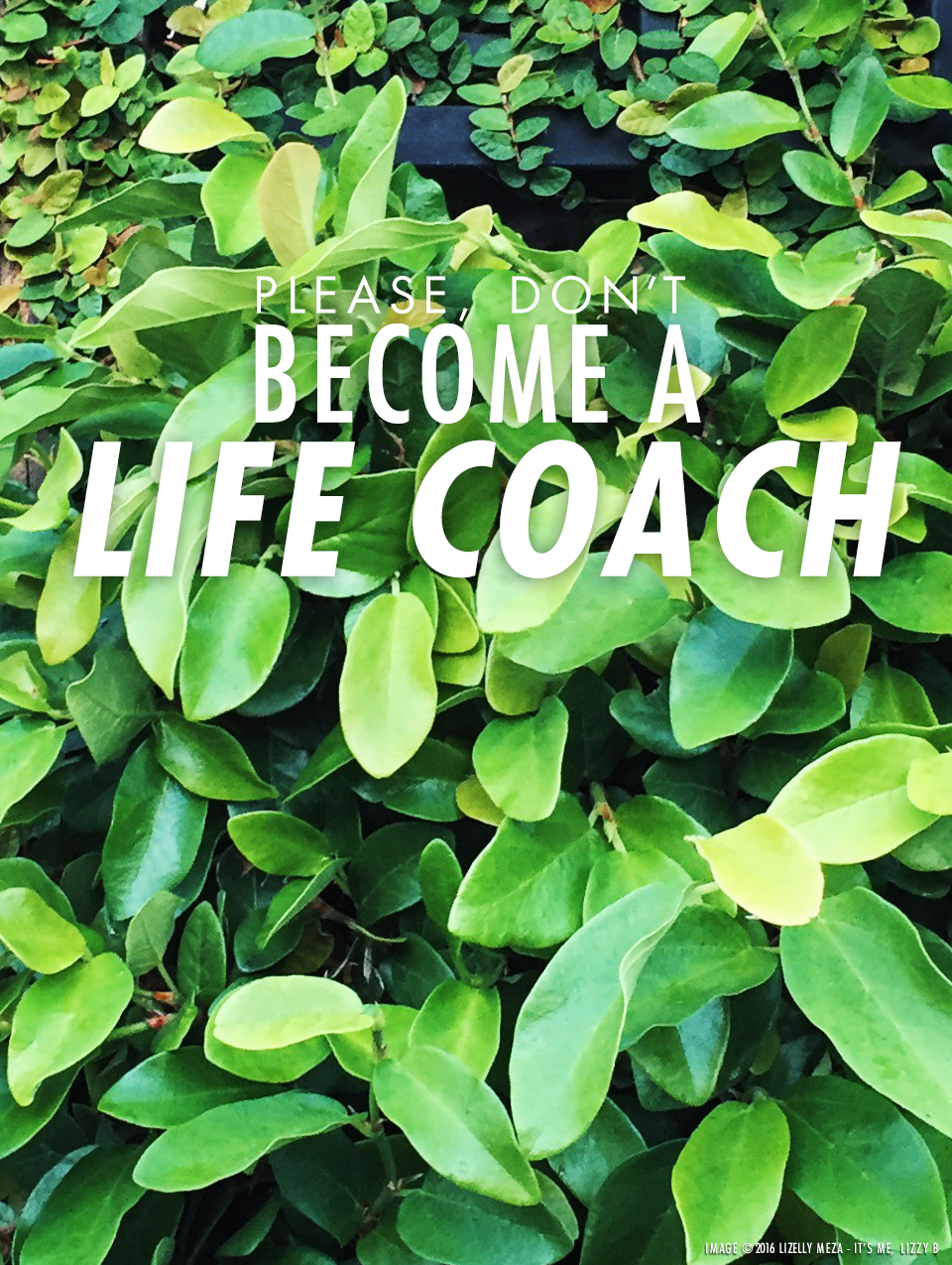 Please, Don't Become a Life Coach // It's Me, Lizzy B - Musings on Life, Business, & The Pursuit of Everyday Joy // Personal blog of Lizelly Meza from Lizzy B Loves