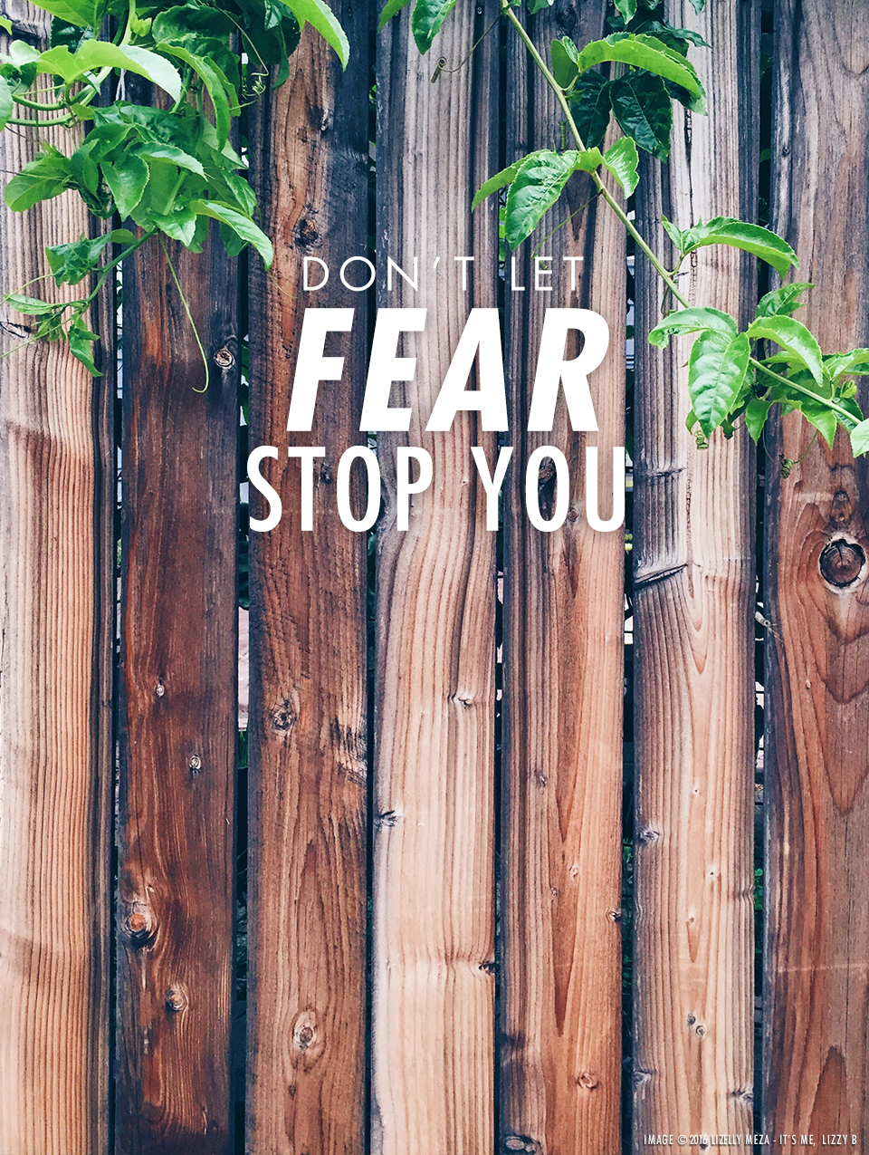 Don't Let Fear Stop You // It's Me, Lizzy B - Musings on Life, Business, & The Pursuit of Everyday Joy // Personal blog of Lizelly Meza from Lizzy B Loves