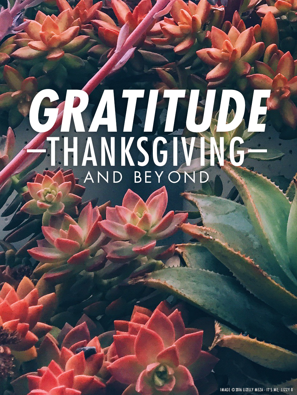 On Gratitude—Thanksgiving and Beyond // It's Me, Lizzy B - Musings on Life, Business, & The Pursuit of Curiosity // Personal blog of Lizelly Meza from Lizzy B Loves