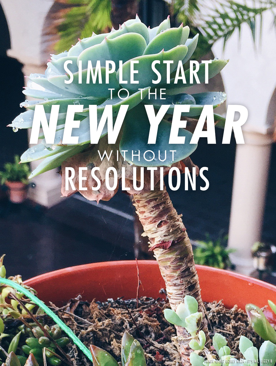 Simple Start to the New Year without Resolutions // It's Me, Lizzy B - Musings on Life, Business, & The Pursuit of Curiosity // Personal blog of Lizelly Meza