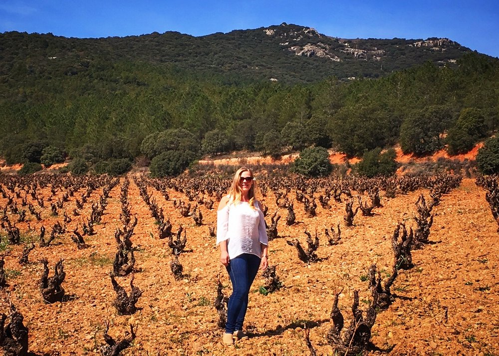Old Vine Garnacha in one of the magical vineyards of co-op Bodegas Paniza in  Cariñena, Spain.