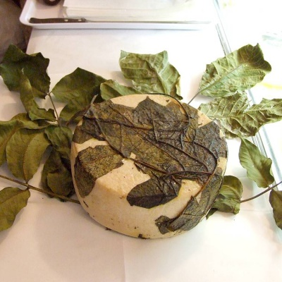 Pecorino Foglie di Noce, a raw sheep's milk cheese aged in walnut tree leaves