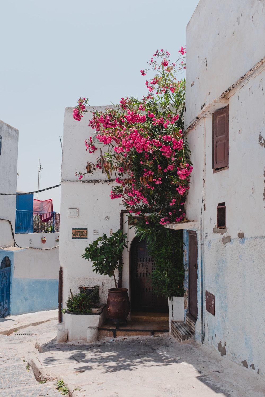 2018 Morocco-30.jpg