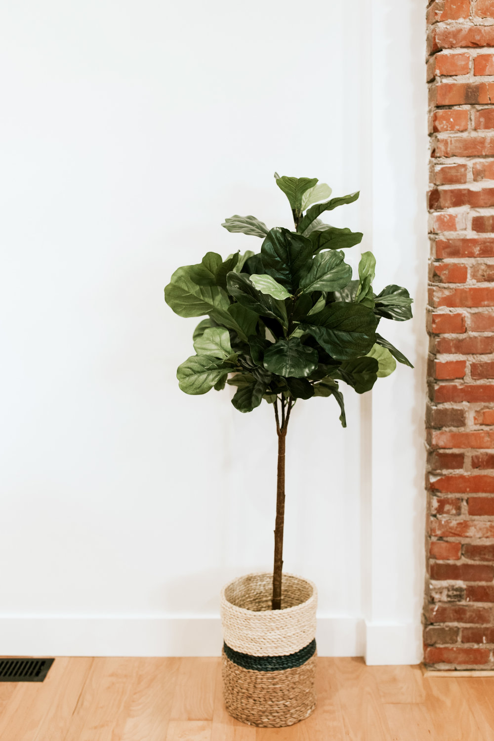 Faux Fiddle Leaf fig - Living room reveal of mid century modern, outdoorsy style home