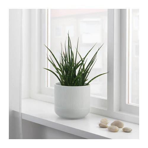 gradvis-plant-pot-gray styled jpg.jpg