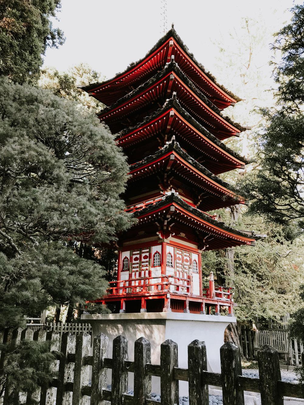 Viewing the Japanese Tea Garden