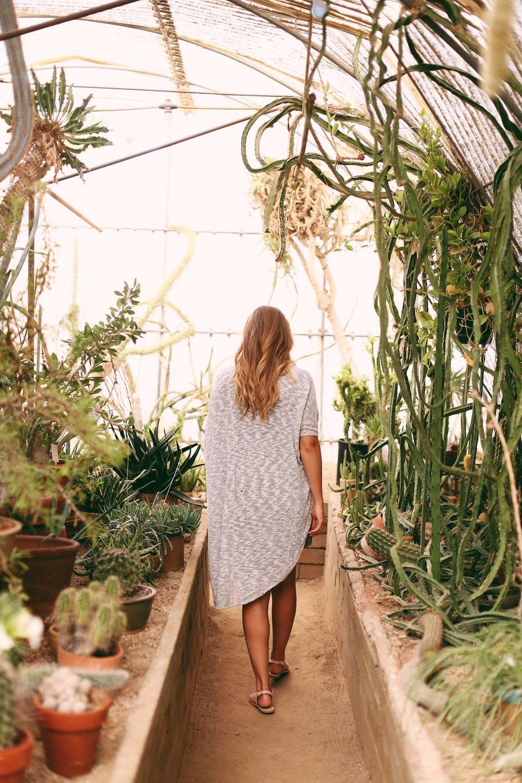 repurposing-content-how-to-palm-springs-botanical-garnden3.JPG