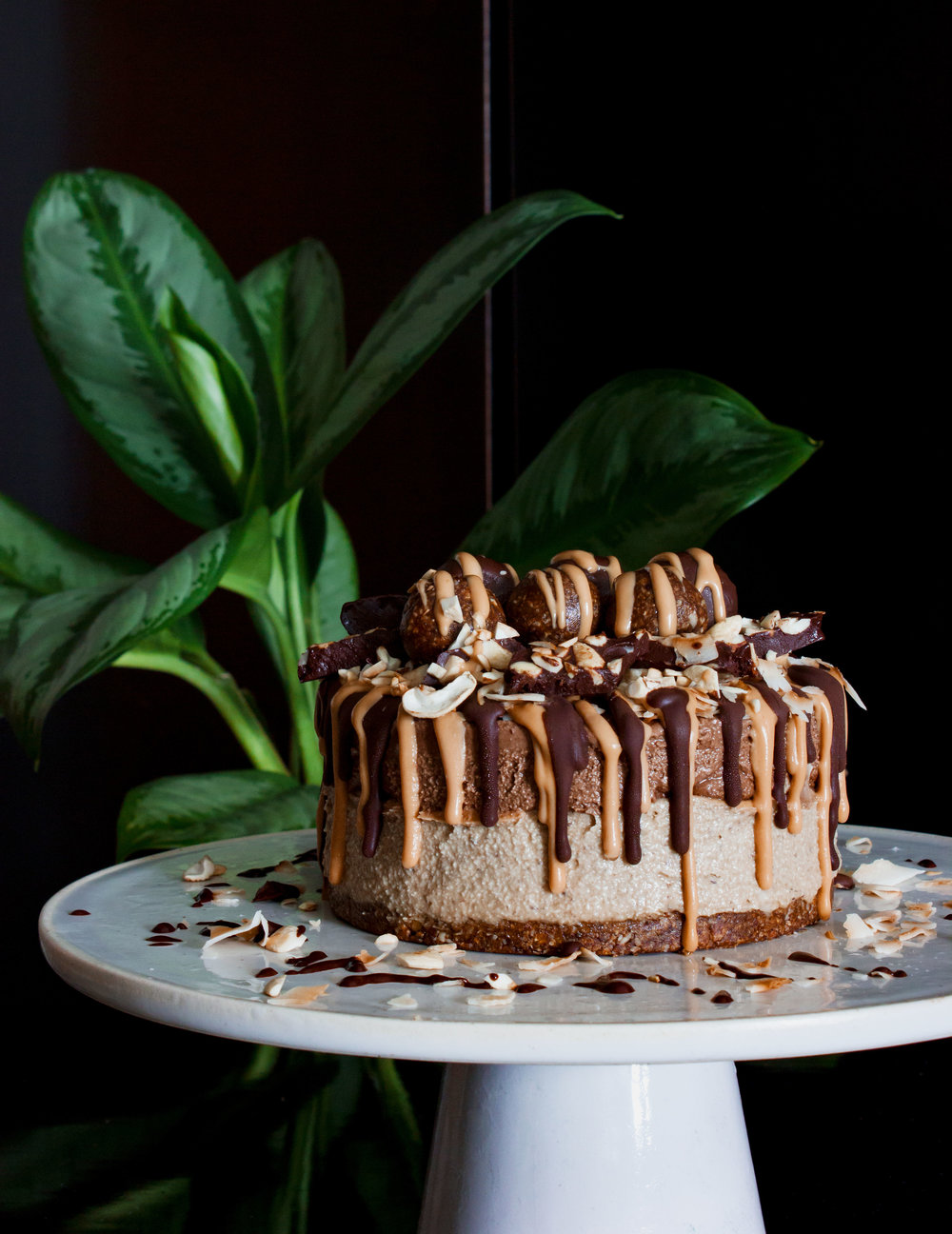 raw-vegan-chocolate-peanut-butter-cake.jpg