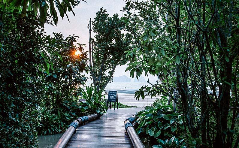 jungle-shakti-thailand-blog-krabi.jpg