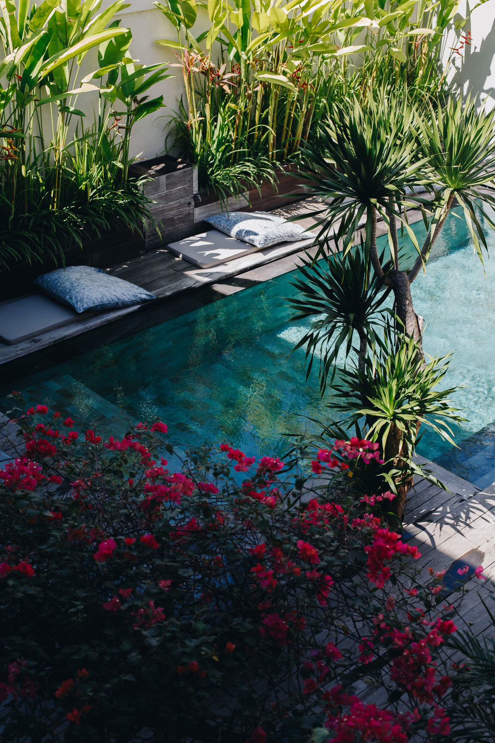 canggu-luxury-villa-pool-blog.jpg