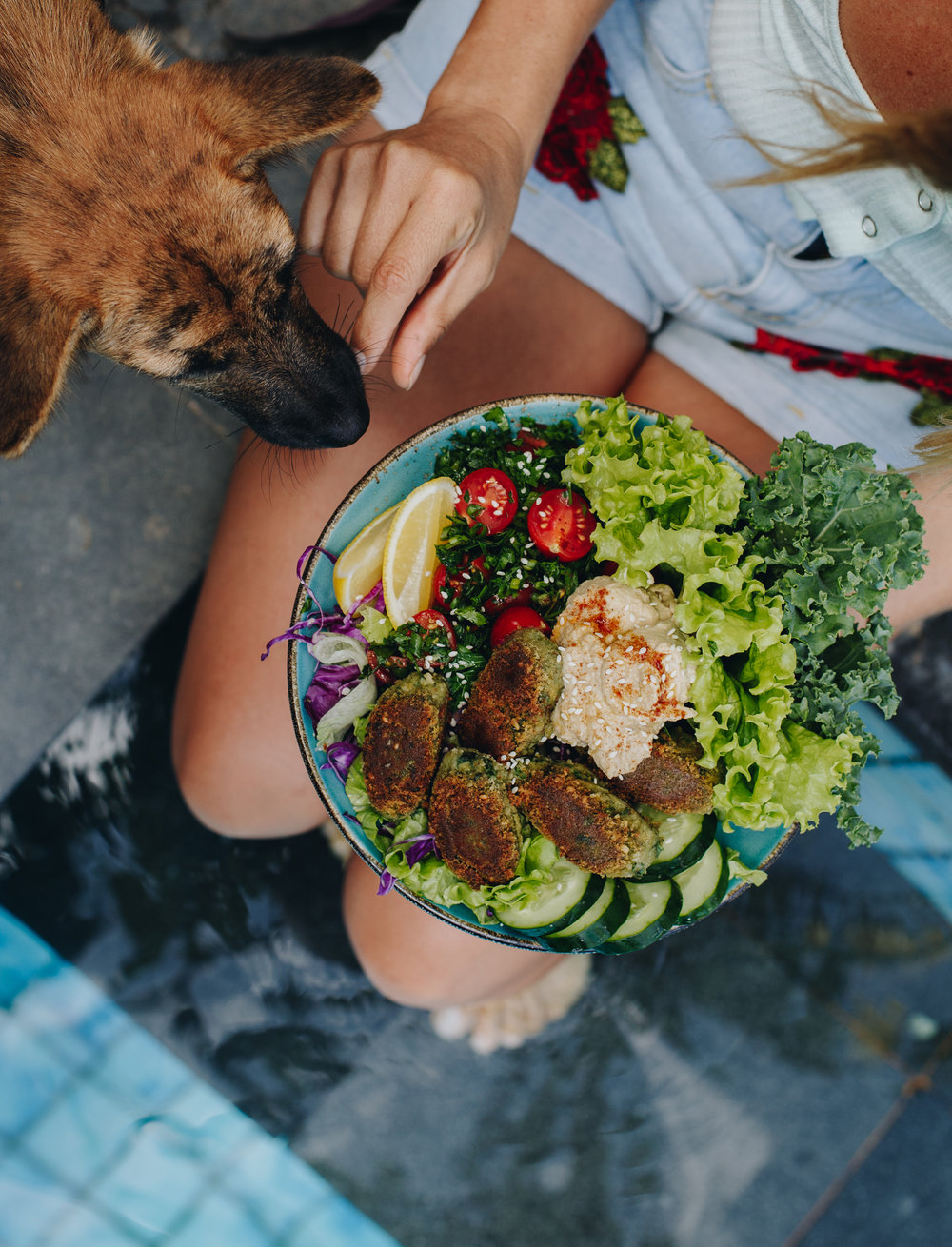 superfood-falafel-bowls-vegan.jpg