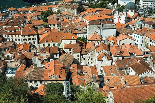 The rooftops of Kotor old town 🇲🇪