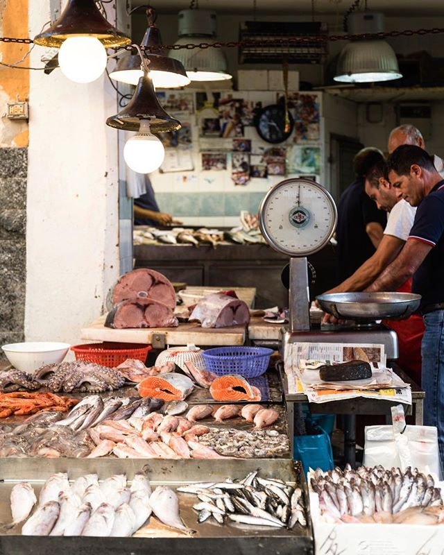 The fresh fish of Sicily