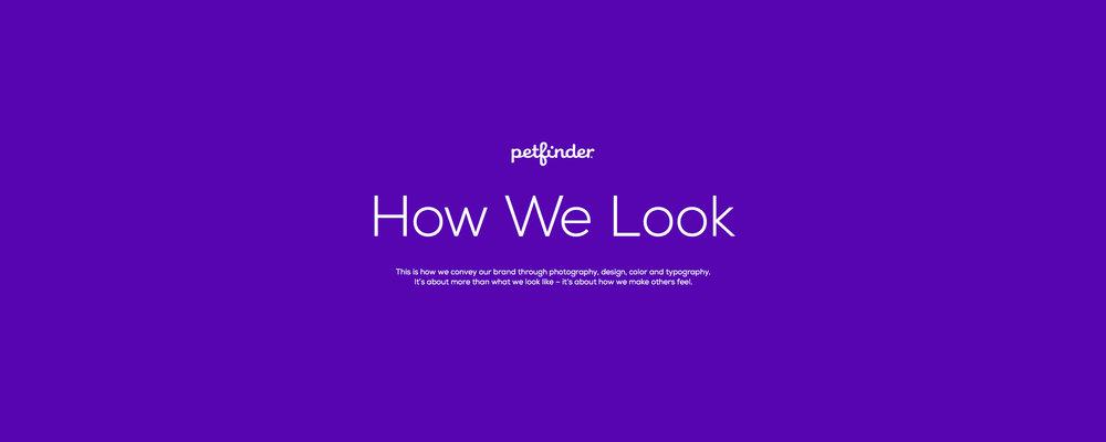 Petfinder Styleguide - 07.11.2016_D.jpg