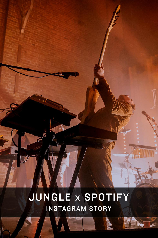 Jungle IG Story Thumb.jpg