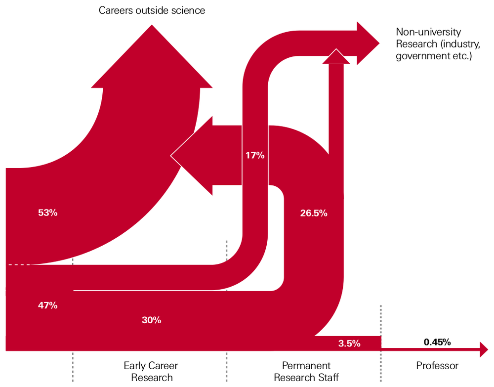 Figure 2. Diagram illustrating transition points encountered in typical career for scientific careers following a PhD. Source The Royal Society [5].