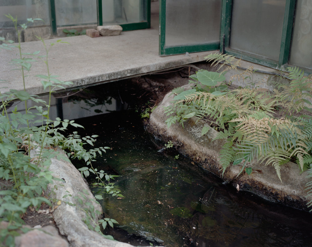 Arc Building_pond_nr door.jpg