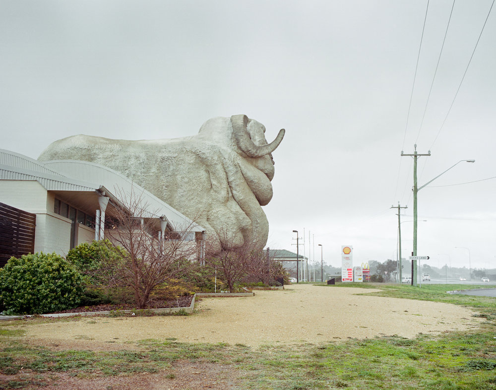 The Big Merino, Goulburn, NSW.jpg