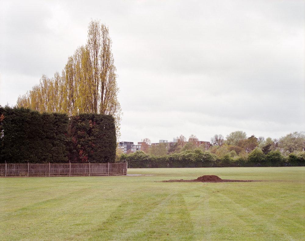 Wimbledon Park-fence & pile.jpg