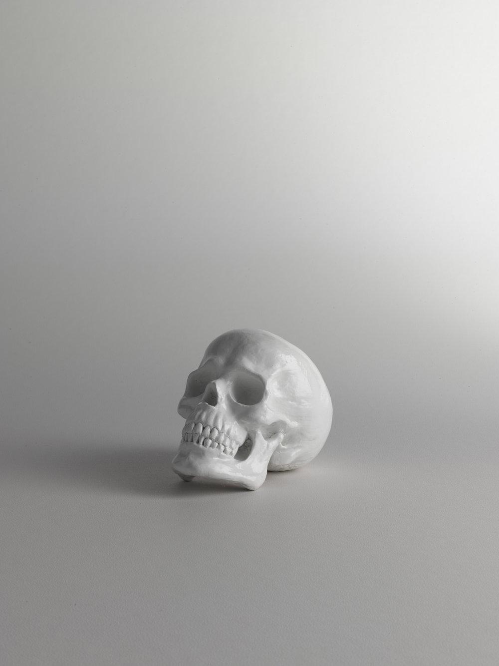 KR Skull_00595.jpg