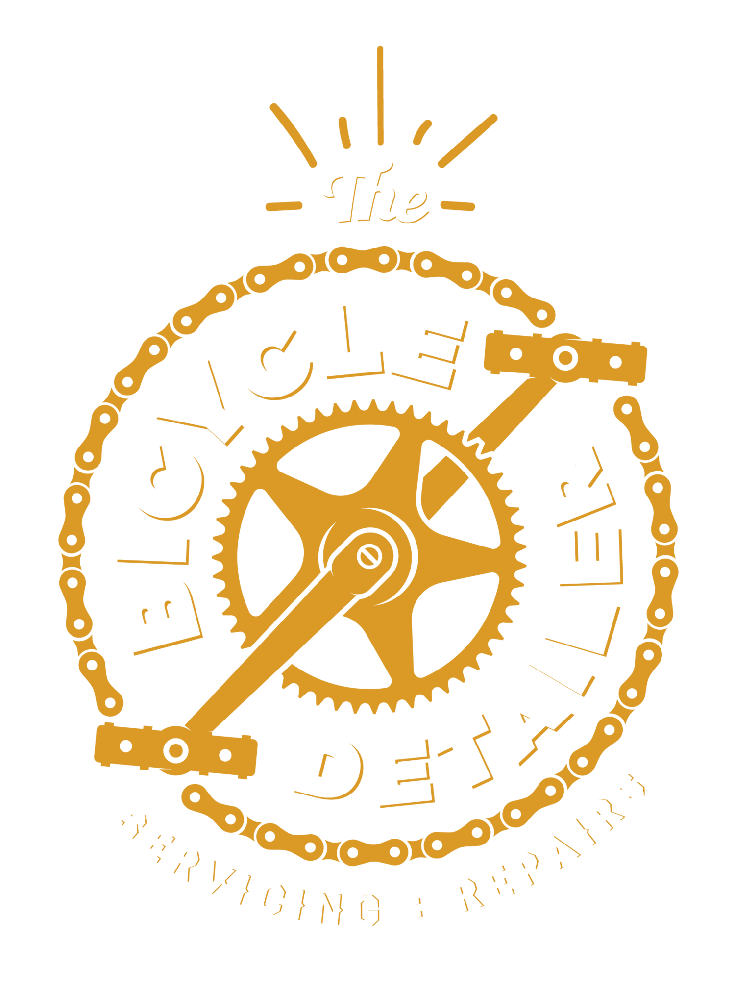 THE BICYCLE DETAILER