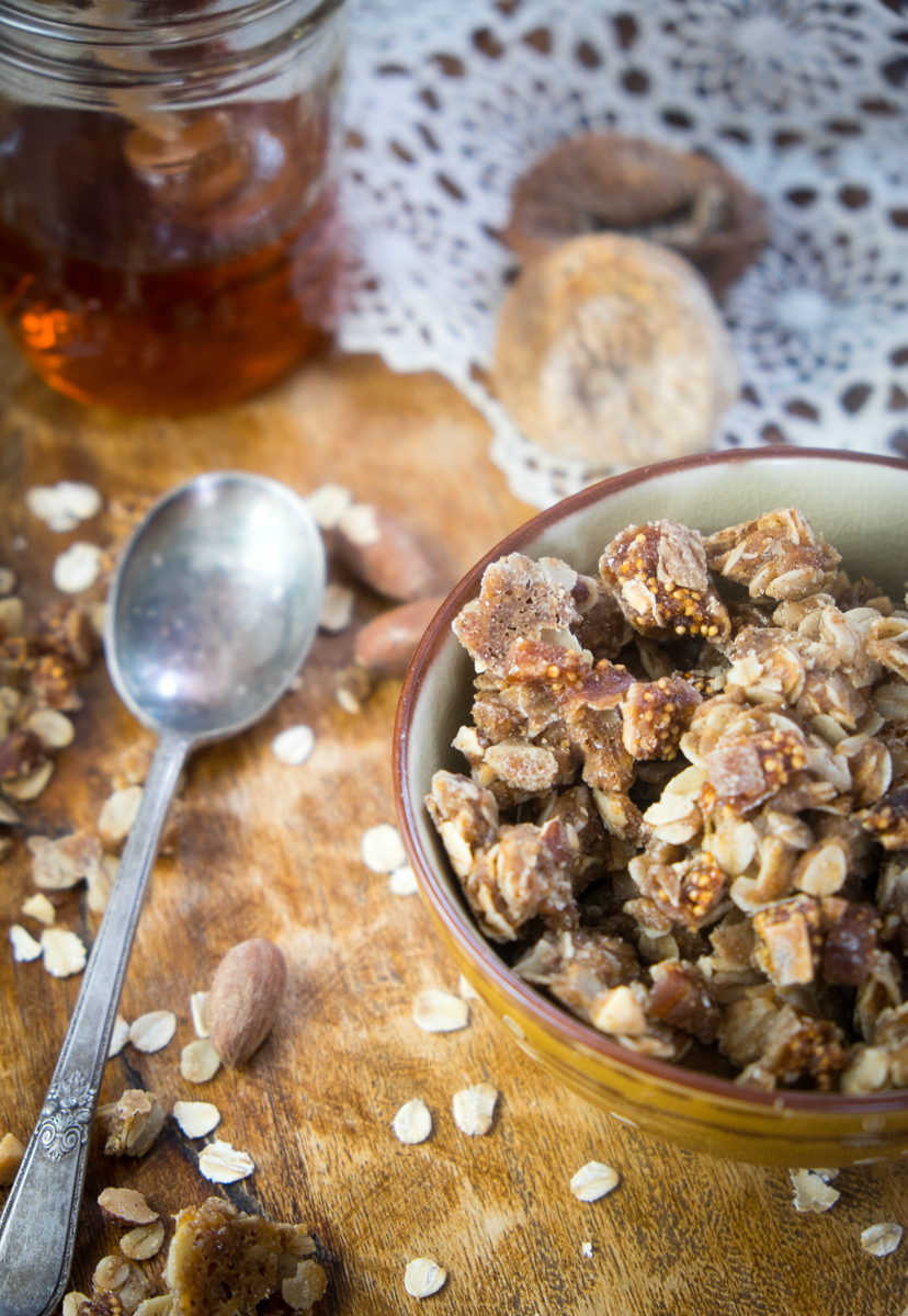 fig-honey-granola
