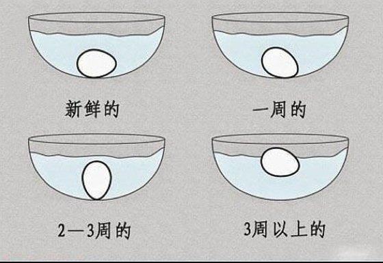《雞蛋浸水法》可以用於判別一顆雞蛋的新鮮程度