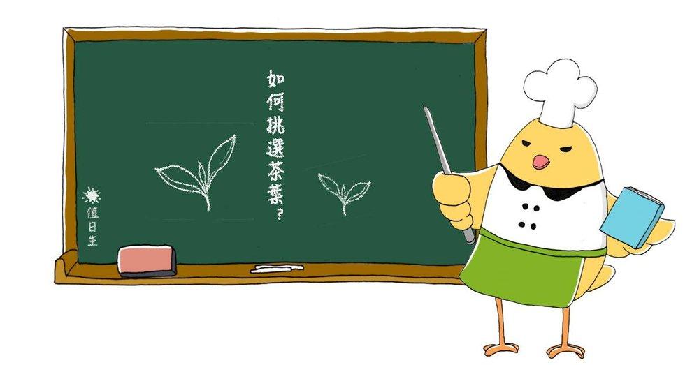 《食材小常識第五期》如何挑選茶葉呢?