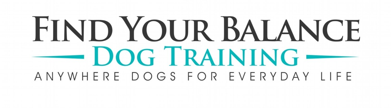 what motivates you your balance dog training what motivates you