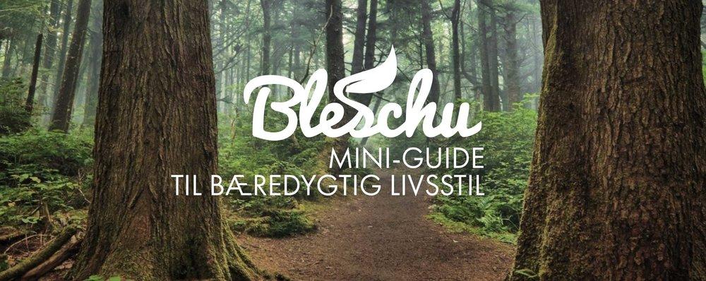 En mere bæredygtig livsstil - hjulpet på vej af Bleschu.dk