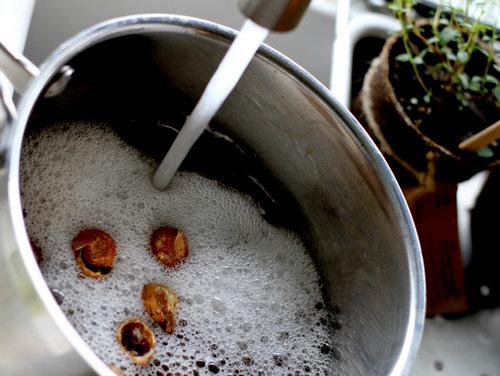 Tilføj 10 hele sæbebærs skaller (eller tilsvarende) pr. liter vand, for at lave sæbebærs grundsæben.